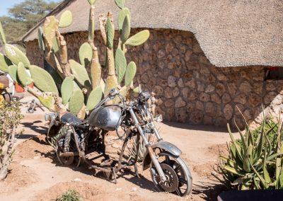 Afrika119